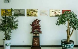 tiansheng group - sede